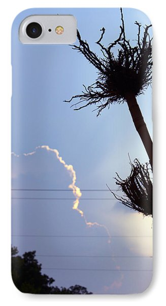 Raising Roots IPhone Case by Ismael Cavazos