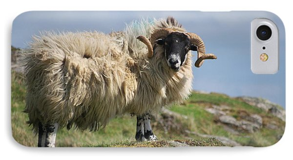 Ram IPhone Case by Juergen Klust