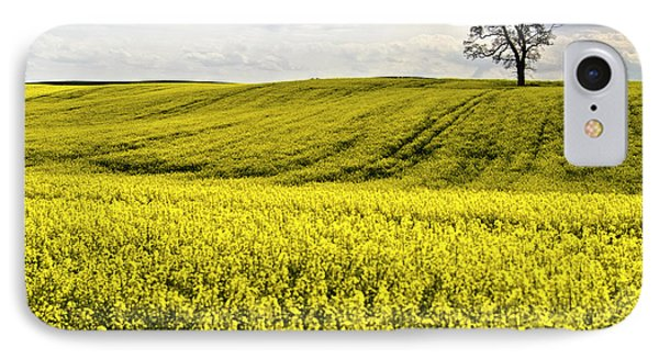 Rape Landscape With Lonely Tree IPhone Case by Heiko Koehrer-Wagner