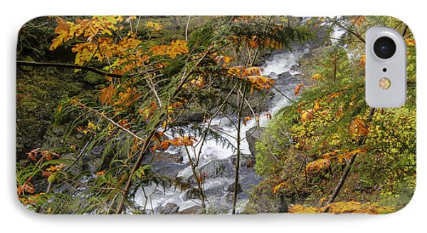 Rapids Through The Autumn Phone Case by Darleen Stry