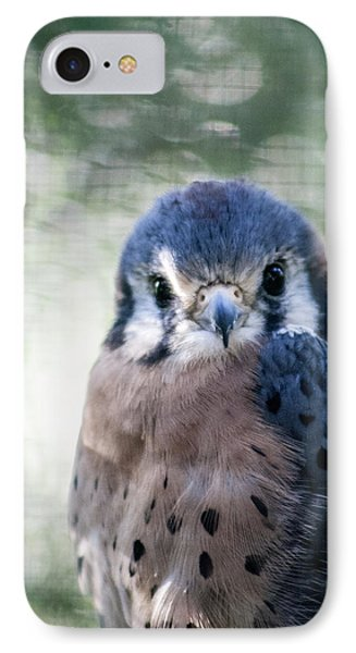 IPhone Case featuring the photograph Raptor Profile by Dawn Romine