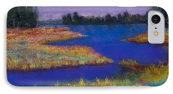 Raquette Lake Phone Case by David Patterson