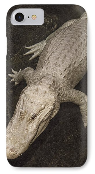 Rare White Alligator IPhone Case