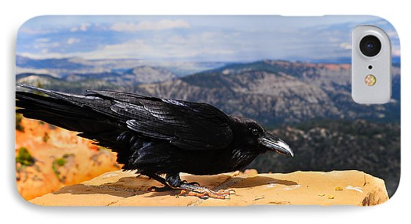 Raven Bryce Canyon IPhone Case by Donald Fink