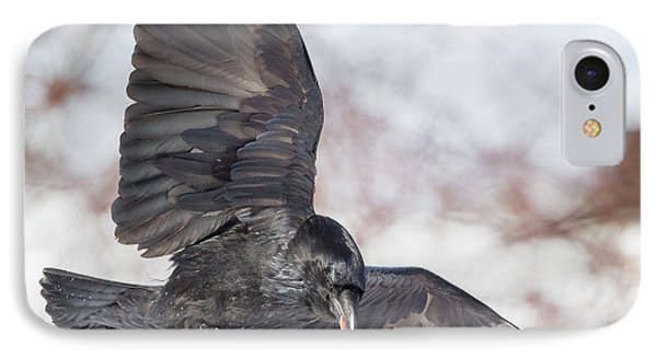 Raven In Flight Square IPhone Case by Bill Wakeley