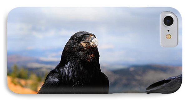 Raven Portrait IPhone Case by Donald Fink