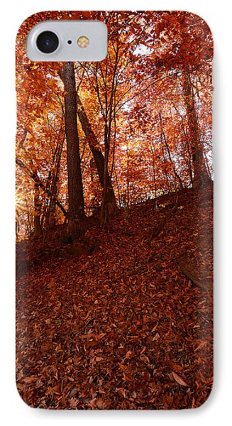 Rays Of Leaves IPhone Case by Lourry Legarde