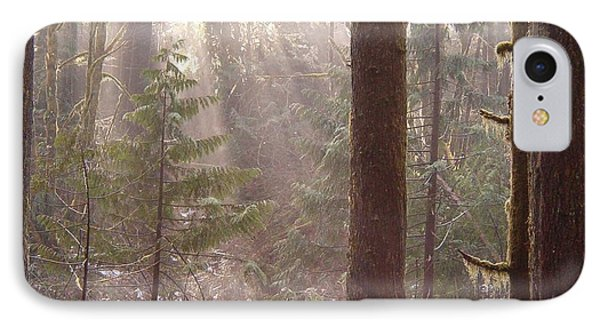 Rays Of Light In Forest IPhone Case