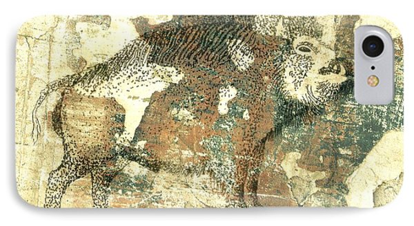 Cave Painting 4  IPhone Case