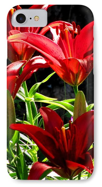 Razzle Dazzle Reds IPhone Case by Marilyn Smith