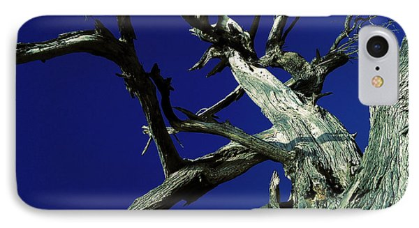 IPhone Case featuring the photograph Reach For The Sky by Janice Westerberg