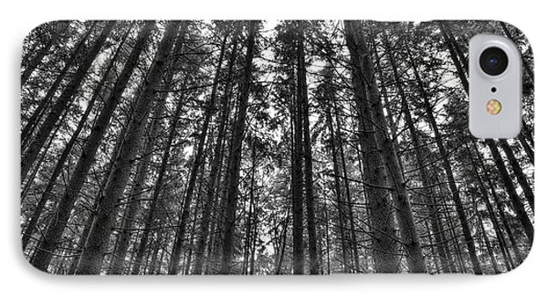 Reaching Pines IPhone Case by Don Nieman