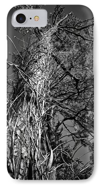 IPhone Case featuring the photograph Reaching To The Sky by Greg Jackson