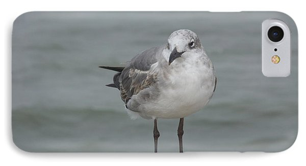 IPhone Case featuring the photograph Ready by Deborah DeLaBarre