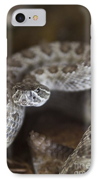 A Rattlesnake Thats Ready To Strike IPhone Case
