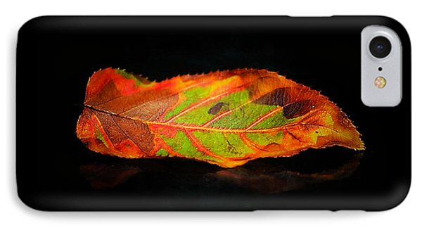 Reclining Leaf IPhone Case