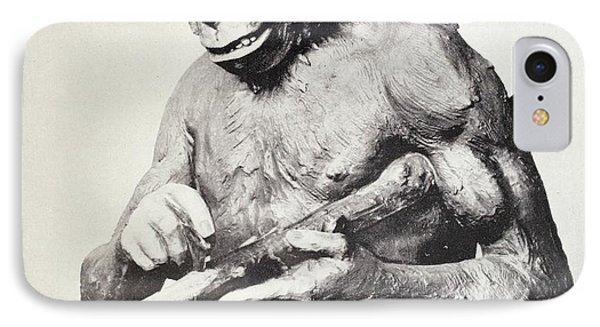 Reconstruction Of Piltdown Man IPhone Case by Paul D Stewart