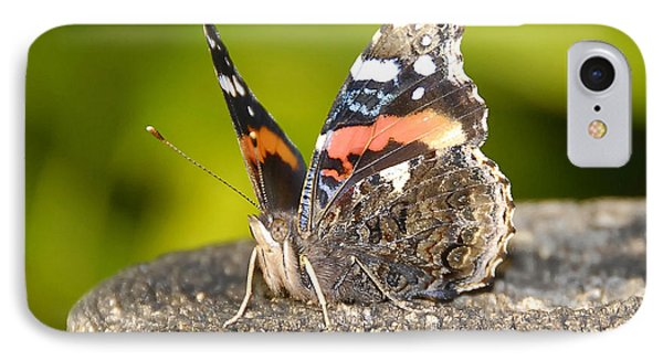 Red Admiral Butterfly Phone Case by David Lee Thompson