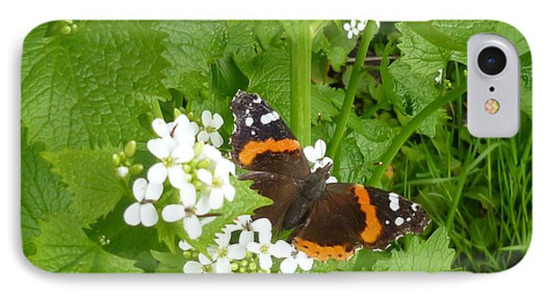 IPhone Case featuring the photograph Red Admiral Butterfly by Lingfai Leung