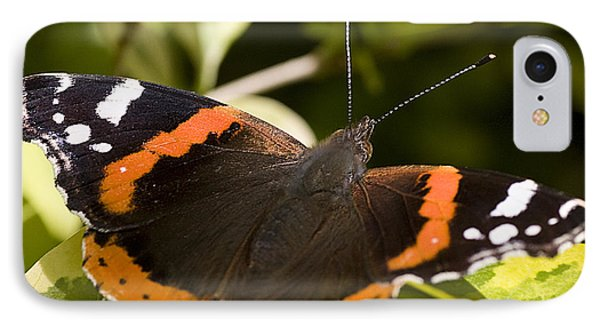 Red Admiral Butterfly IPhone Case by Richard Thomas