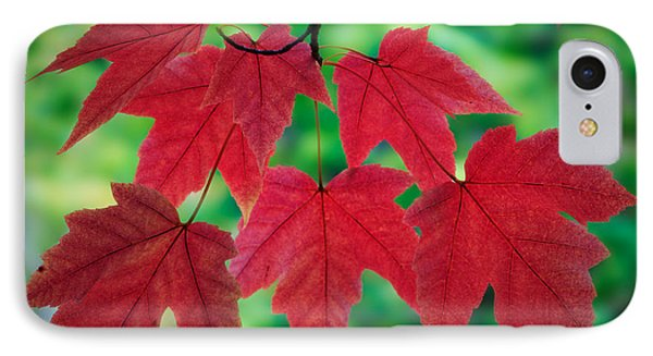 Red And Green Phone Case by Inge Johnsson