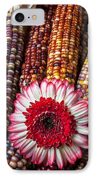 Red And White Mum With Indian Corn Phone Case by Garry Gay