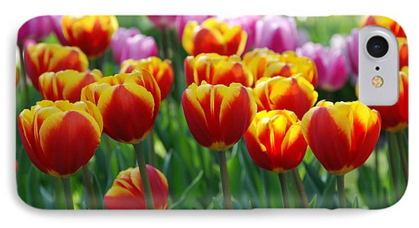 IPhone Case featuring the photograph Red And Yellow Tulips  by Allen Beatty