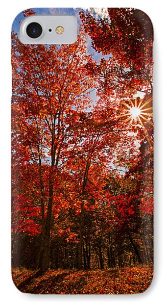 IPhone Case featuring the photograph Red Autumn Leaves by Jerry Cowart