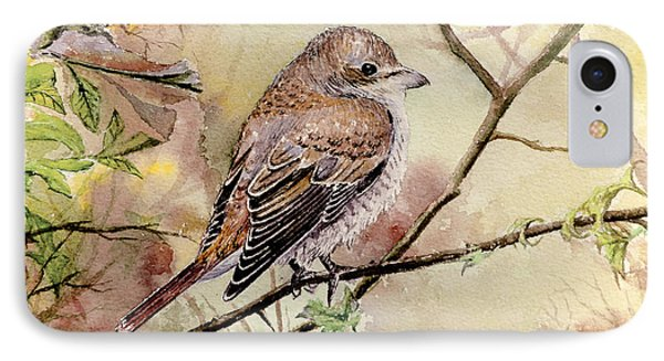 Red Backed Shrike Phone Case by Andrew Read