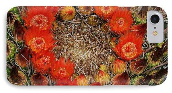 Red Barell Cactus Flowers IPhone Case by Tom Janca