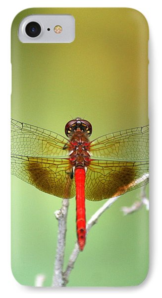 Red Baron  IPhone Case by Neal Eslinger