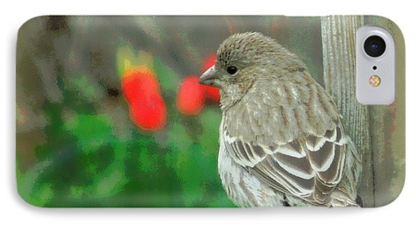 Red Behind Little Beak IPhone Case by Heidi Manly