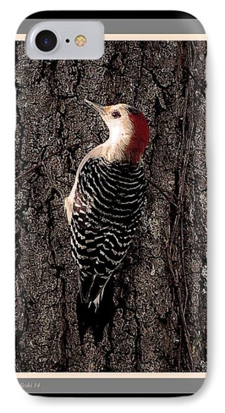 Red Bellied IPhone Case by Steve Godleski