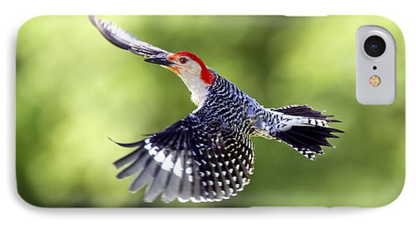 Red-bellied Woodpecker Flight IPhone Case by David Lester