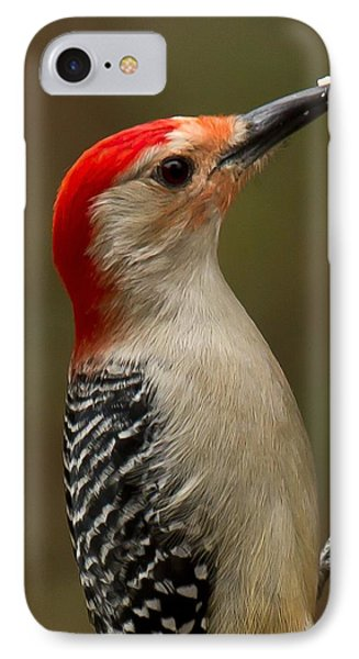 IPhone Case featuring the photograph Red-bellied Woodpecker by Robert L Jackson