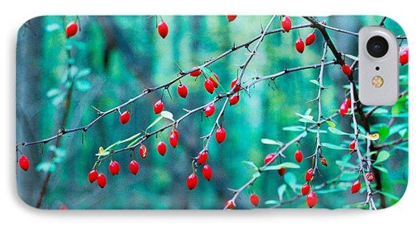 Red Berries In October IPhone Case