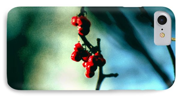 Red Berries On Canvas IPhone Case