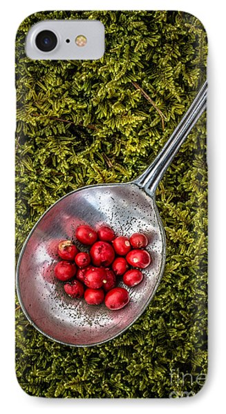 Red Berries Silver Spoon Moss IPhone Case by Edward Fielding