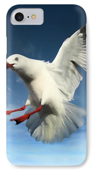 Red Billed Seagull  Phone Case by Amanda Stadther