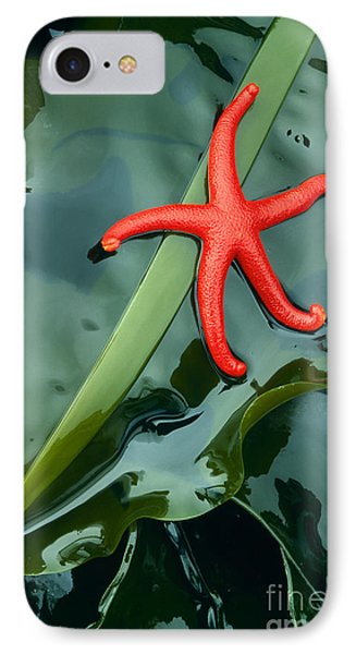 Red Bloodstar IPhone Case by Inge Johnsson