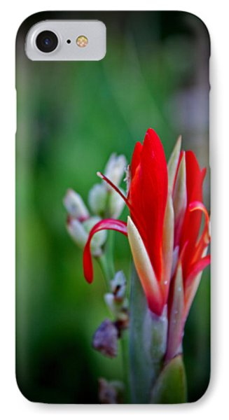 IPhone Case featuring the photograph Red Bloom by Jean Haynes