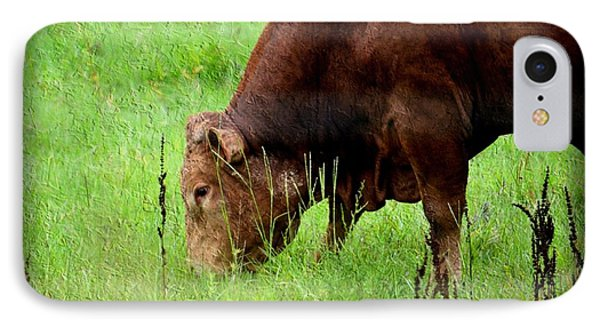 Red Brangus Bull IPhone Case by Maria Urso