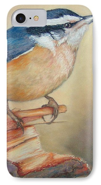 Red-breasted Nuthatch Bird IPhone Case by Janet Garcia