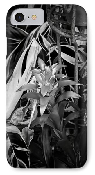 Red Bromeliad And Tricolor Gingers Bw IPhone Case