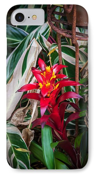 Red Bromeliad And Tricolor Gingers IPhone Case