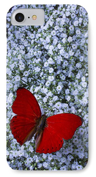 Red Butterfly And Baby's Breath IPhone Case by Garry Gay