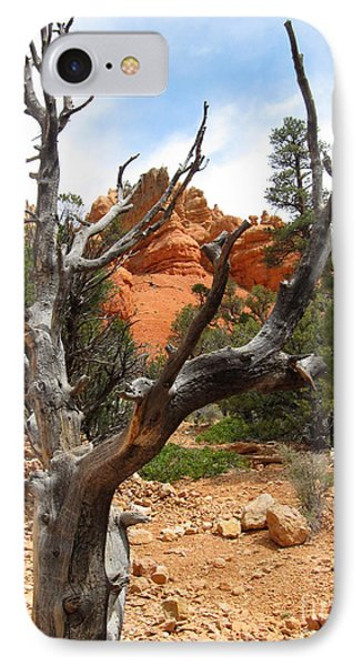 Red Canyon Tree And Rocks IPhone Case by Debra Thompson
