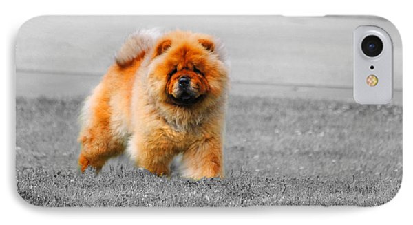 Red Chow Phone Case by Jai Johnson