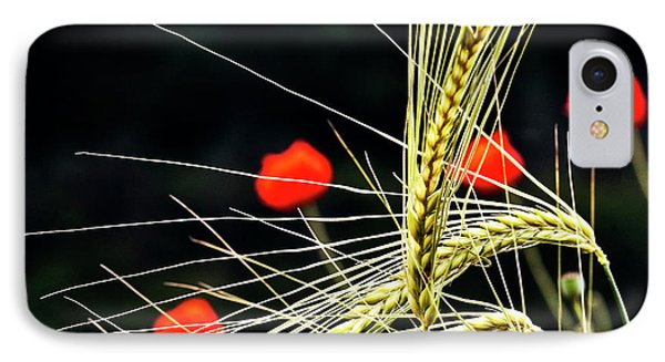 Red Corn Poppies Phone Case by Heiko Koehrer-Wagner