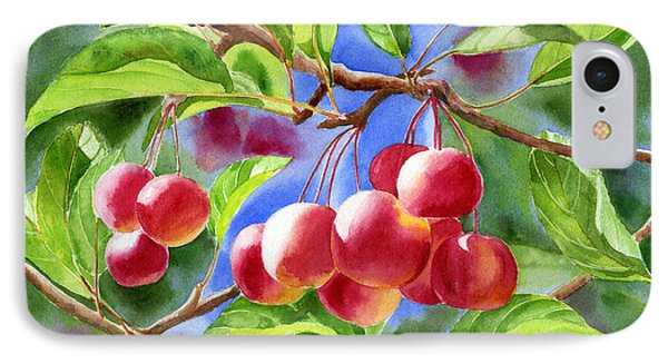Red Crab Apples With Background Phone Case by Sharon Freeman
